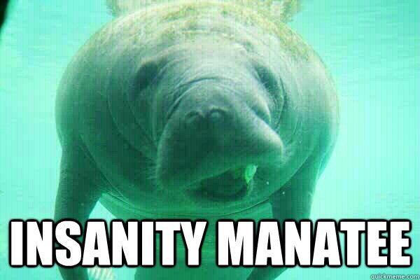 Funny Manatee Meme : Insanity manatee memes quickmeme