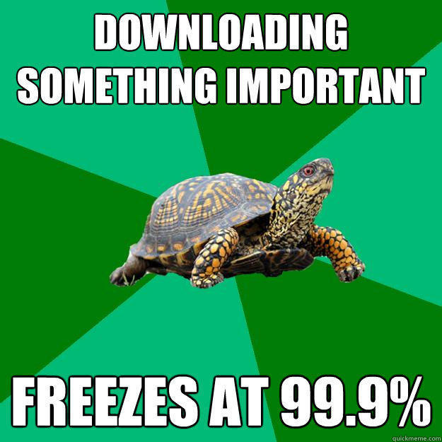 downloading something important freezes at 99.9%  Torrenting Turtle