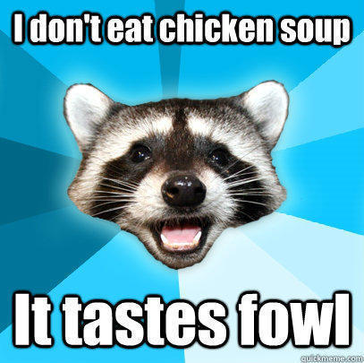 I don't eat chicken soup It tastes fowl - I don't eat chicken soup It tastes fowl  Lame Pun Coon