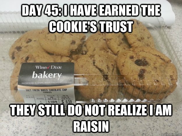 Day 45: I have earned the cookie's trust They still do not realize I am raisin - Day 45: I have earned the cookie's trust They still do not realize I am raisin  Misc
