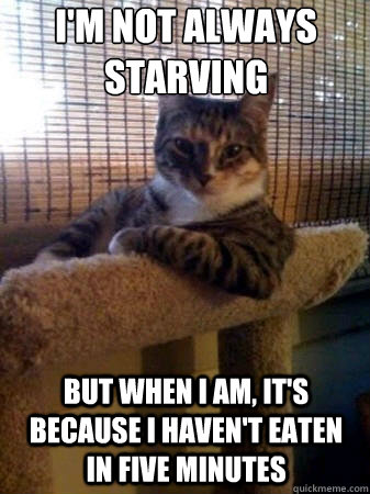 i'm not always starving but when i am, it's because i haven't eaten in five minutes  - i'm not always starving but when i am, it's because i haven't eaten in five minutes   The Most Interesting Cat in the World