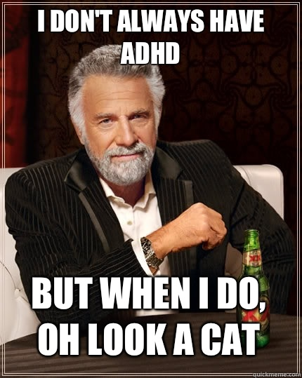 I don't always have ADHD but when I do, oh Look a cat - I don't always have ADHD but when I do, oh Look a cat  The Most Interesting Man In The World
