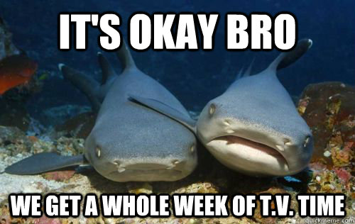It's okay Bro we get a whole week of T.V. Time - It's okay Bro we get a whole week of T.V. Time  Compassionate Shark Friend