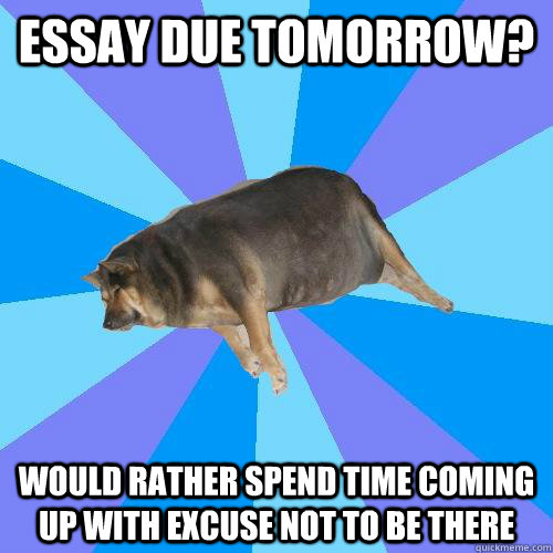 Essay due tomorrow help