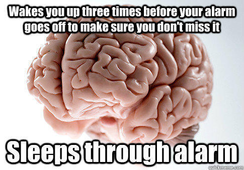 Wakes you up three times before your alarm goes off to make sure you don't miss it Sleeps through alarm  - Wakes you up three times before your alarm goes off to make sure you don't miss it Sleeps through alarm   Scumbag Brain