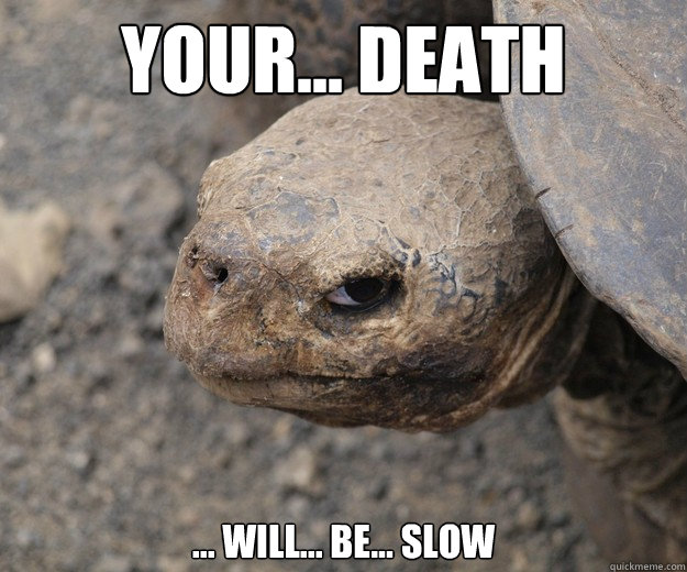 Your... death ... will... be... slow  Insanity Tortoise
