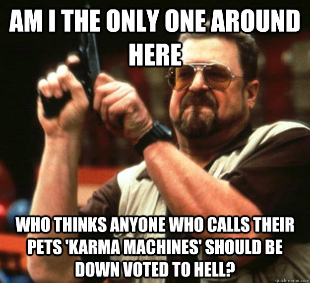 am I the only one around here who thinks anyone who calls their pets 'Karma machines' should be down voted to hell?  Angry Walter