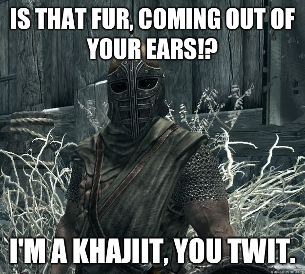 Is that fur, coming out of your ears!? I'm a Khajiit, you twit.  Skyrim Guard