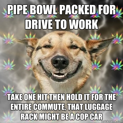 pipe bowl packed for drive to work take one hit then hold it for the entire commute, that luggage rack might be a cop car - pipe bowl packed for drive to work take one hit then hold it for the entire commute, that luggage rack might be a cop car  Stoner Dog