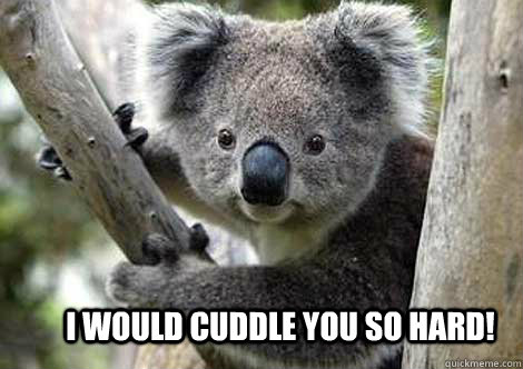 I would cuddle you so hard!
