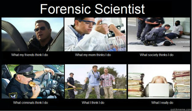 what do forensic scientists do essay