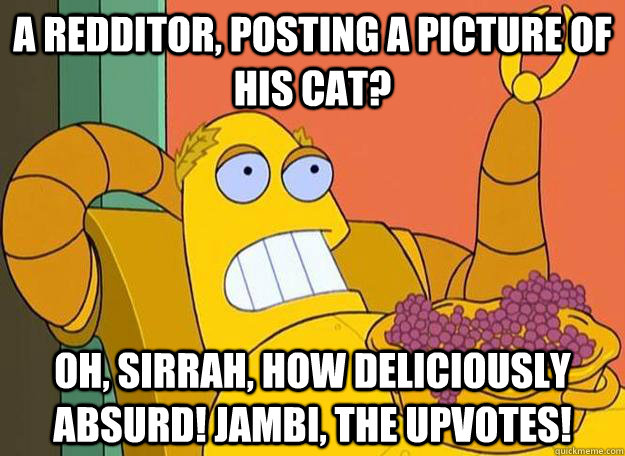 A redditor, posting a picture of his cat? Oh, sirrah, how deliciously absurd! Jambi, the upvotes! - A redditor, posting a picture of his cat? Oh, sirrah, how deliciously absurd! Jambi, the upvotes!  Hedonism Bot