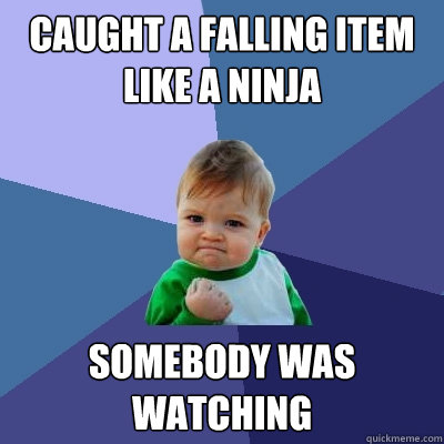 caught a falling item like a ninja somebody was watching - caught a falling item like a ninja somebody was watching  Success Kid