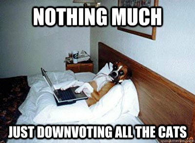 nothing much just downvoting all the cats - nothing much just downvoting all the cats  Misc
