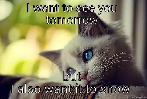 I WANT TO SEE YOU TOMORROW BUT I ALSO WANT IT TO SNOW  First World Cat Problems