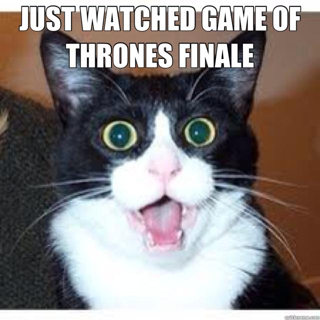 a8b984a94034a8b0d5a6f4241983f3eca2d16bfec732467334ef3e4fedbe4877 just watched game of thrones finale shocked cat quickmeme