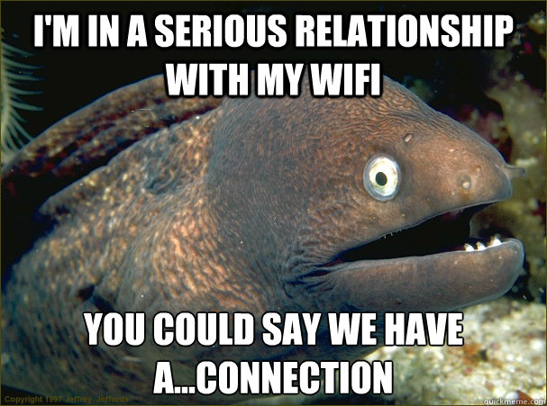 I'm in a serious relationship with my wifi you could say we have a...connection - I'm in a serious relationship with my wifi you could say we have a...connection  Bad Joke Eel