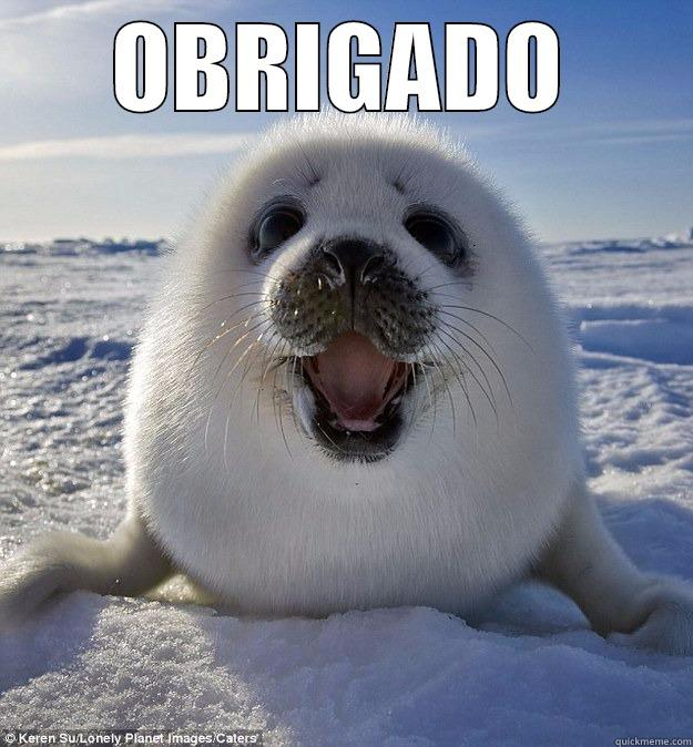 OBRIGADO  Easily Pleased Seal