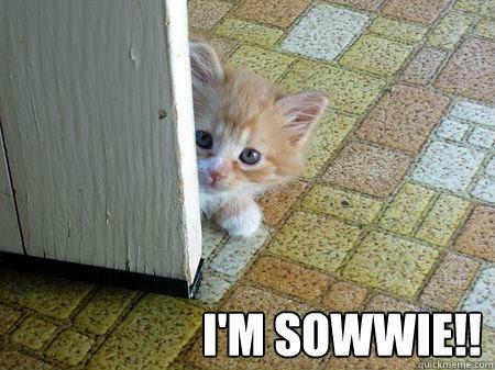 I'M SoWWIE!!