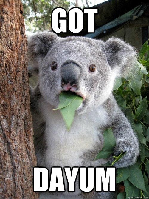 a8f0aeb85b237bdaf62de8474e139fd887cf9b28964dc191e129465e20e5478b got dayum disbelief koala quickmeme