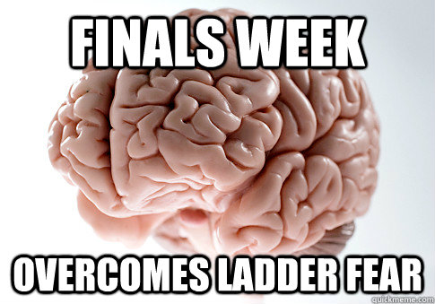 FINALS WEEK OVERCOMES LADDER FEAR  - FINALS WEEK OVERCOMES LADDER FEAR   Scumbag Brain