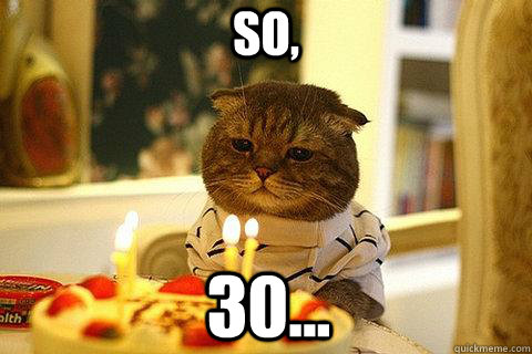 a90d303b4977580165f8b0d01d6b7e013598af9bc84cb6956475c3d3f01e5cd1 so, 30 sad birthday cat quickmeme