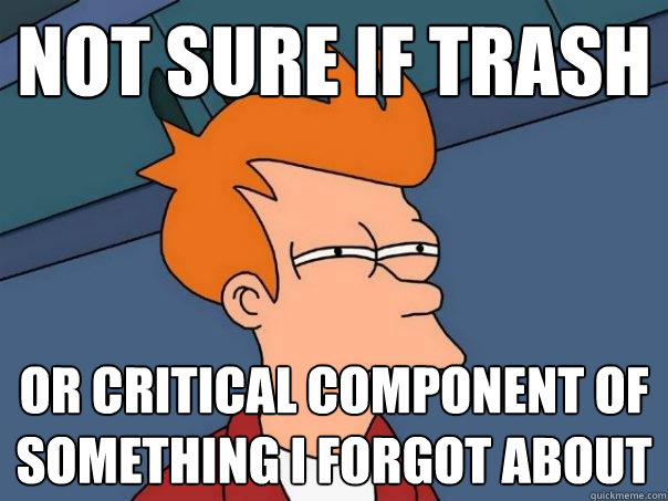 not sure if trash or critical component of something i forgot about  - not sure if trash or critical component of something i forgot about   Futurama Fry