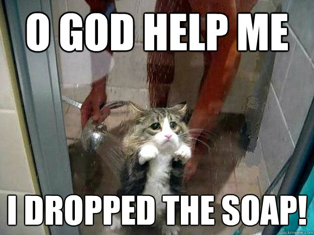 o god help me i dropped the soap!  Shower kitty