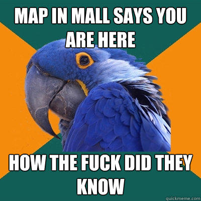 Map in mall says YOU ARE HERE HOW THE FUCK DID THEY KNOW - Map in mall says YOU ARE HERE HOW THE FUCK DID THEY KNOW  Paranoid Parrot