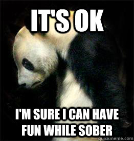 It's ok I'm sure I can have fun while sober - It's ok I'm sure I can have fun while sober  Sad Panda