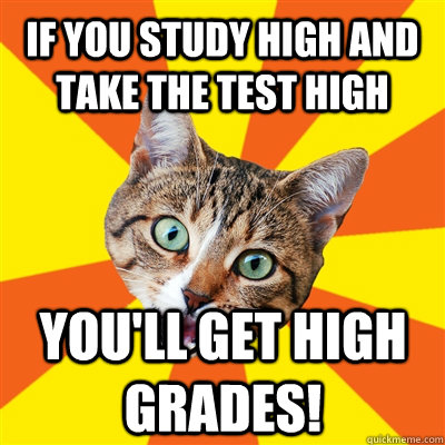 If you study high and take the test high You'll get high grades! - If you study high and take the test high You'll get high grades!  Bad Advice Cat
