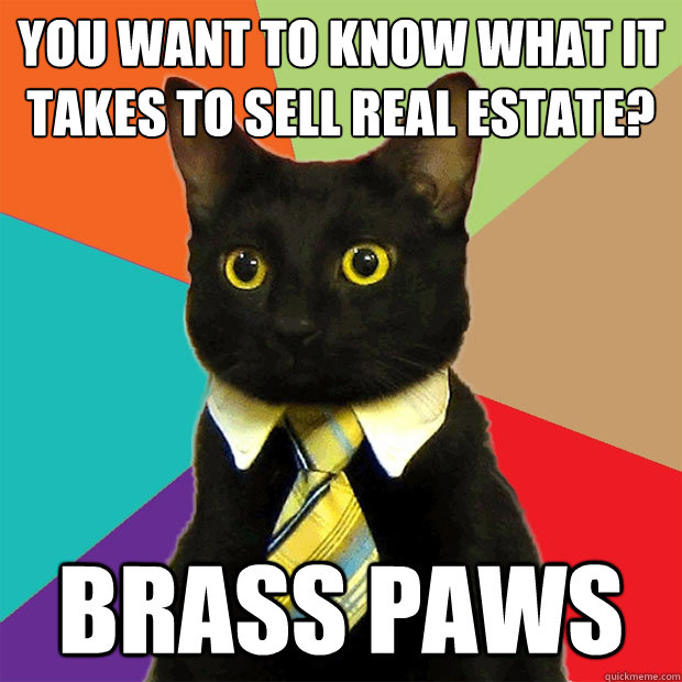 You want to know what it takes to sell real estate?  BRASS PAWS - You want to know what it takes to sell real estate?  BRASS PAWS  Business Cat
