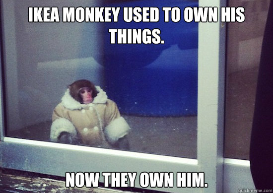 Ikea Monkey used to own his things. Now they own him.