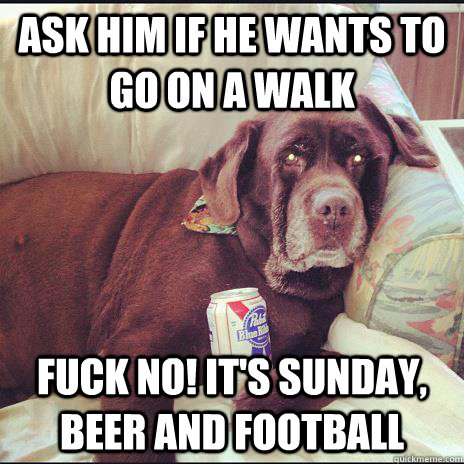 Ask him if he wants to go on a walk Fuck no! it's sunday, beer and football - Ask him if he wants to go on a walk Fuck no! it's sunday, beer and football  Man Cave Dog