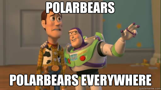 Polarbears Polarbears everywhere - Polarbears Polarbears everywhere  Everywhere