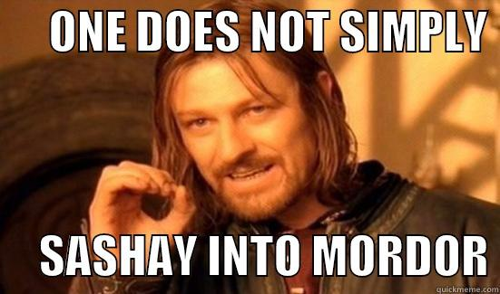 ONE DOES NOT SIMPLY       SASHAY INTO MORDOR Boromir