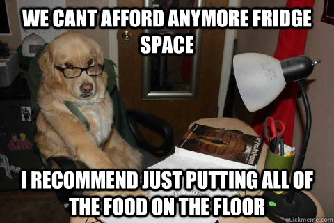 we cant afford anymore fridge space I recommend just putting all of the food on the floor - we cant afford anymore fridge space I recommend just putting all of the food on the floor  Financial Advice Dog