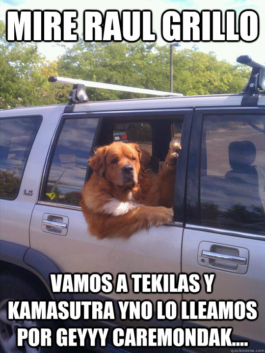 MIRE RAUL GRILLO VAMOS A TEKILAS Y KAMASUTRA YNO LO LLEAMOS POR GEYYY CAREMONDAK....  Womans Best Friend Dog