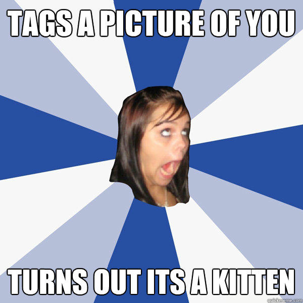 Tags a picture of you Turns out its a kitten - Tags a picture of you Turns out its a kitten  Annoying Facebook Girl