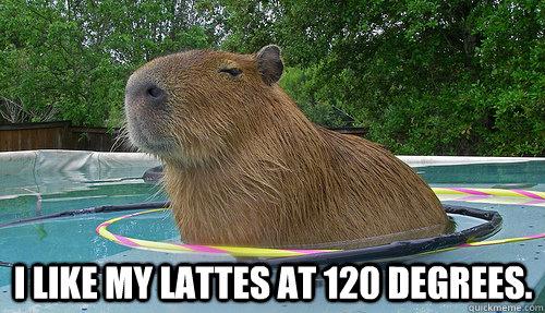 I like my Lattes at 120 degrees.