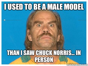 I used to be a male model Than I saw Chuck Norris... in person