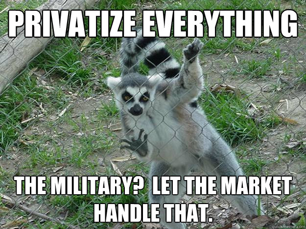 privatize everything The Military?  Let the market handle that.  Libertarian Lemur