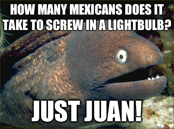 How many Mexicans does it take to screw in a lightbulb? Just Juan! - How many Mexicans does it take to screw in a lightbulb? Just Juan!  Bad Joke Eel