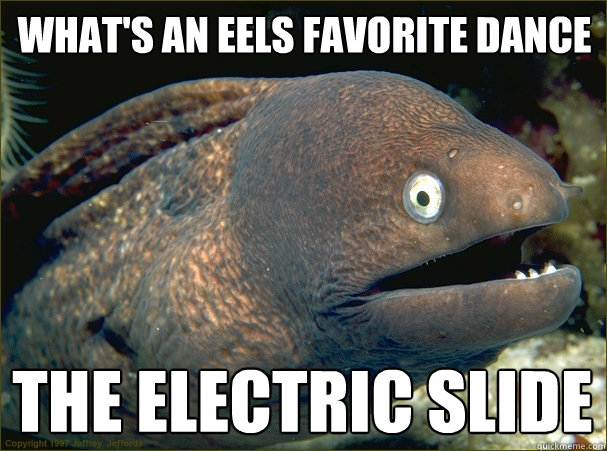 What's an eels favorite dance the electric slide - What's an eels favorite dance the electric slide  Bad Joke Eel
