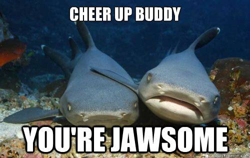 aa361072558cd35a2f8877efa68b63e2587be96df027d3a673cefc51d520bb20 cheer up buddy you're jawsome compassionate shark friend quickmeme,Cheer Up Meme