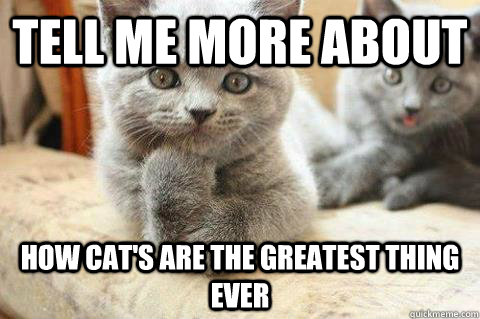 tell me more about how cat's are the greatest thing ever  condescending cat