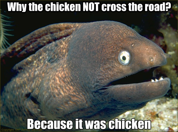 Why the chicken NOT cross the road? Because it was chicken - Why the chicken NOT cross the road? Because it was chicken  Bad Joke Eel