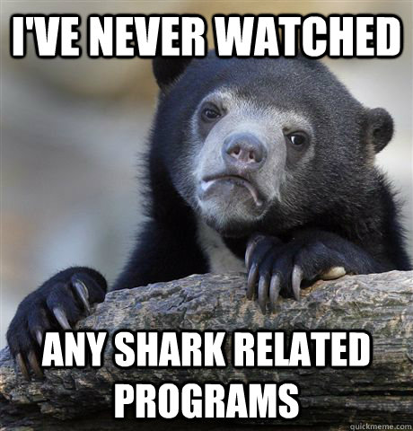i've never watched any shark related programs  Confession Bear