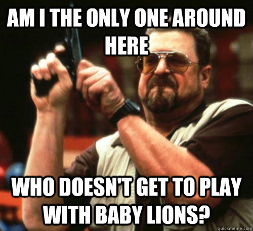 Am i the only one around here who doesn't get to play with baby lions? - Am i the only one around here who doesn't get to play with baby lions?  Am I The Only One Around Here