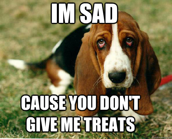 im sad cause you don't give me treats  Basset Hound of guilt